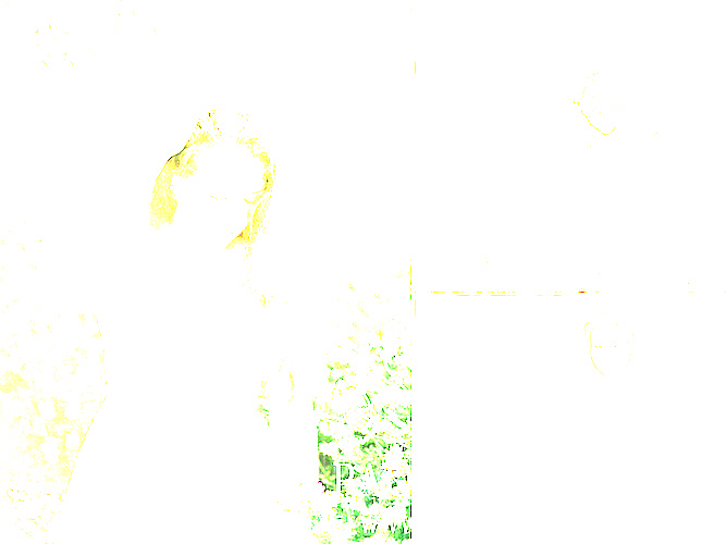 storyboard002.jpg