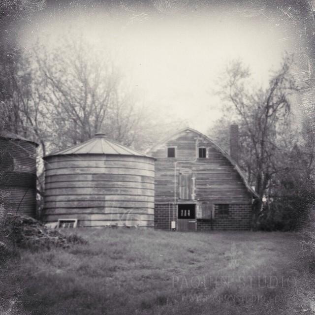 Forgotten barns. Instant analog #Polaroid #mamiya645 #fujifilm #paquinstudio #spring #Minnesota