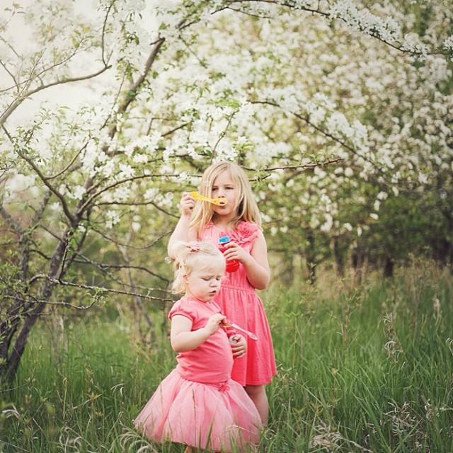 Sisters in Spring. #paquinstudio #owatonna #film #flowers #portra160 #mamiya645 #minnesota #naturallight