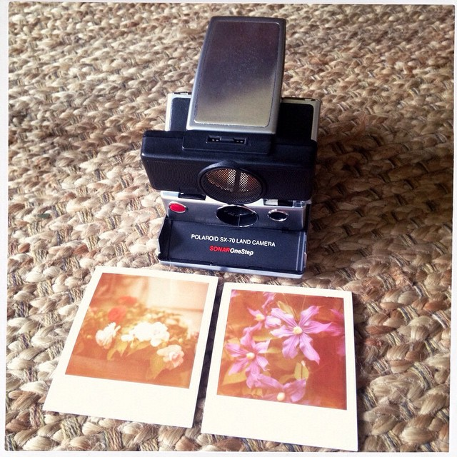 SX-70 sonar and This was the best pack of expired film I've had. #sx-70