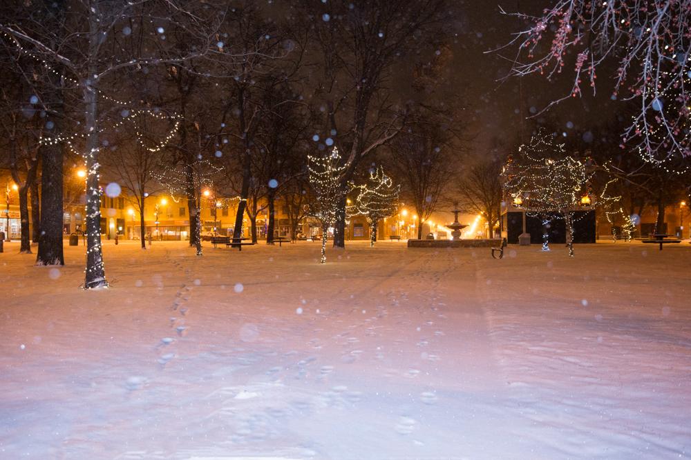 Let it snow, let it snow. Pretty Central Park in